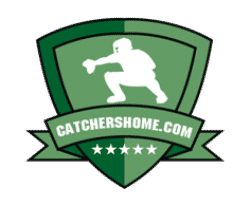 Best Fastpitch Softball Bats [2019 Season] - See Our Reviews!