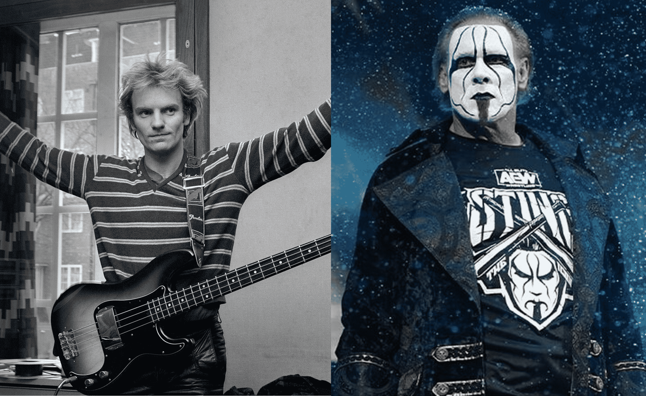 Sting the musician and Sting the wrestler